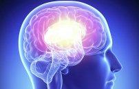 Холестериновыебляшки в сосудах головного мозга
