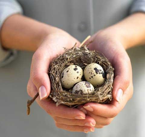перепелиные яйца при сахарном диабете 2 типа
