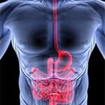 Жжение при заболевании поджелудочной железы thumbnail