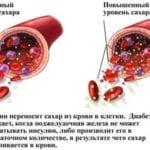 Норма инсулина в крови у подростков натощак: в чем причина колебания уровня гормона