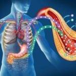 Анализ на инсулин: подготовка и цена, как правильно сдавать тест?