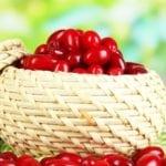Кизил при сахарном диабете 2 типа: диета и лечение плодами