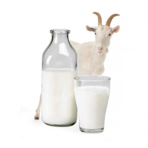 Козье молоко при сахарном диабете 2 типа: полезно ли его пить ...