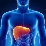 Гепа мерц при сахарном диабете: лечение диабетической гепатопатии