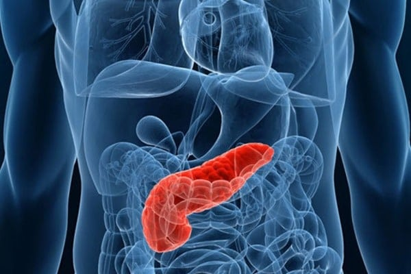 Пересадка поджелудочной железы при сахарном диабете: цена в России