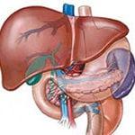 Диета при жировом гепатозе печени и диабете