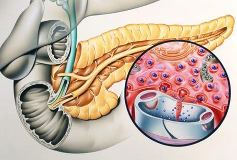 Норма инсулина в крови у мужчин натощак: анализ на гормон