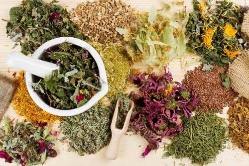 Травы при сахарном диабете 2 типа: список, какие растения можно ...