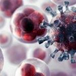 Пчелиная пыльца при сахарном диабете: как принимать пергу?