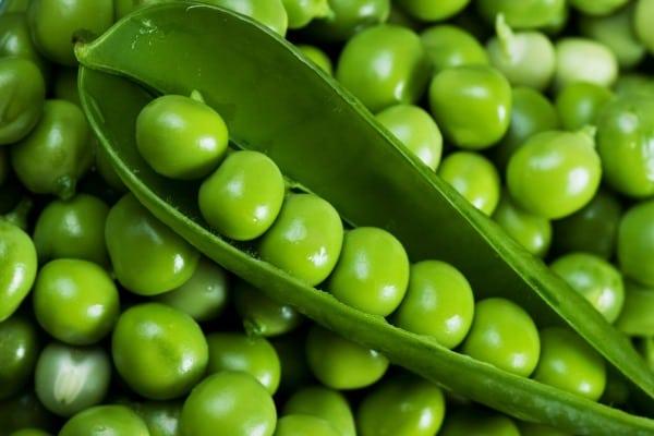 Зеленый горошек при диабете 2 типа: можно ли есть консервированный ...