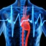 Дибикор при аритмии: как принимать при сахарном диабете?