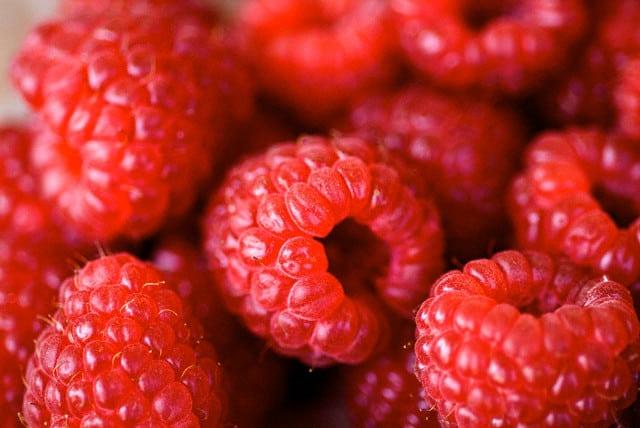 Малина при сахарном диабете 2 типа и ежевика: можно или нет ...