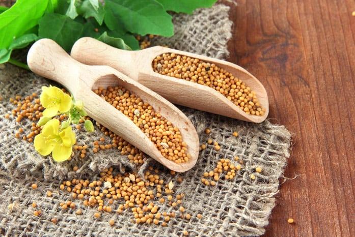 семена горчицы при сахарном диабете 2 типа
