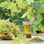 Травы для поддержания поджелудочной железы