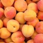 Можно ли есть персики при панкреатите?