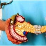 Какие ферменты входят в панкреатический сок человека?
