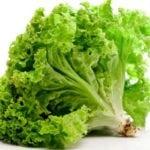 Какие салаты можно есть при панкреатите: рецепты блюд