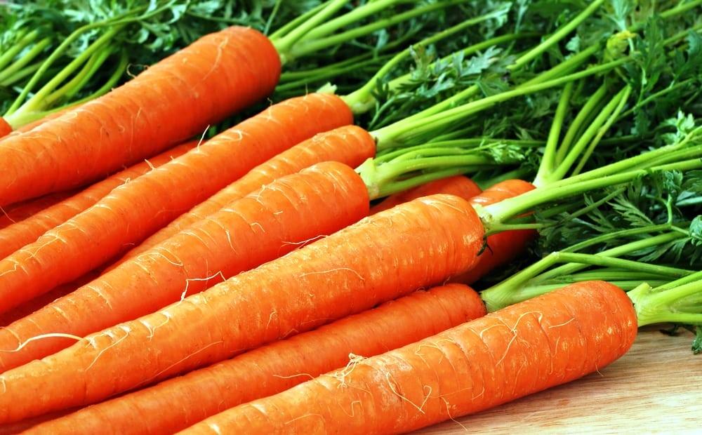 морковное пюре при панкреатите рецепт