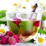 Травяные сборы при гипертонии и лекарственные растения от болезней сердца