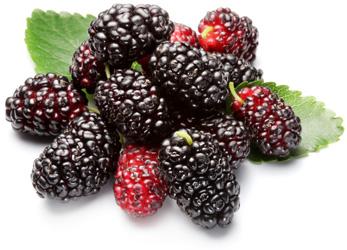 Какие ягоды можно есть при сахарном диабете 2 типа и какие нельзя
