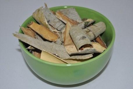 Какая польза коры осины при сахарном диабете 2 типа