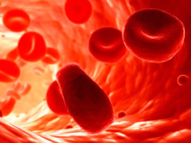 Как в анализах обозначается сахар в крови, и какие анализы его показывают